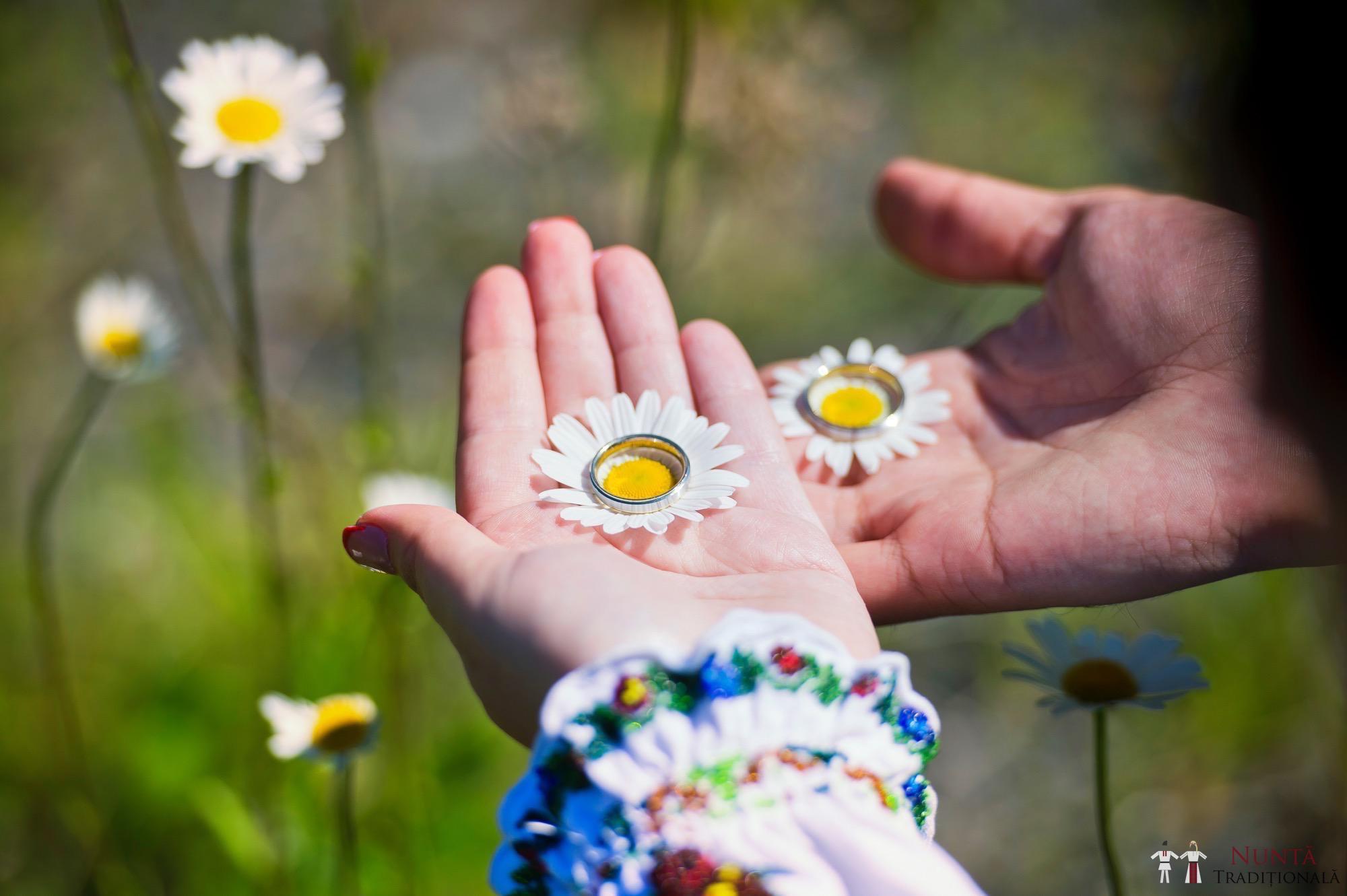 Povești Nunți Tradiționale - Gabriela și Mădălin - Nuntă Tradițională în Suceava, Bucovina 13