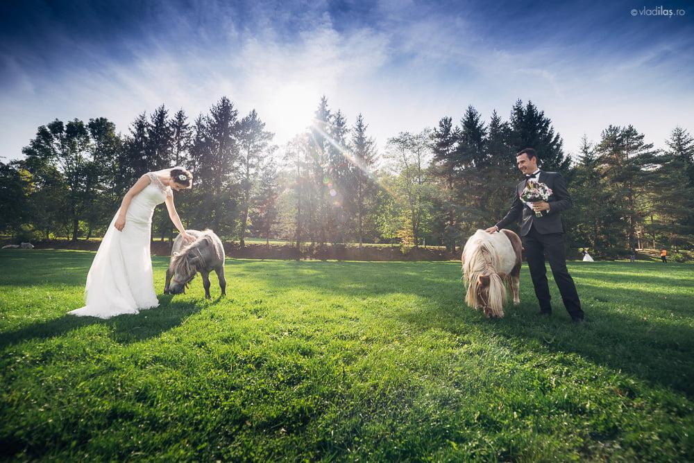 Povești Nunți Tradiționale - Mihaela și Paul - Nuntă în ținutul Neamțului 11