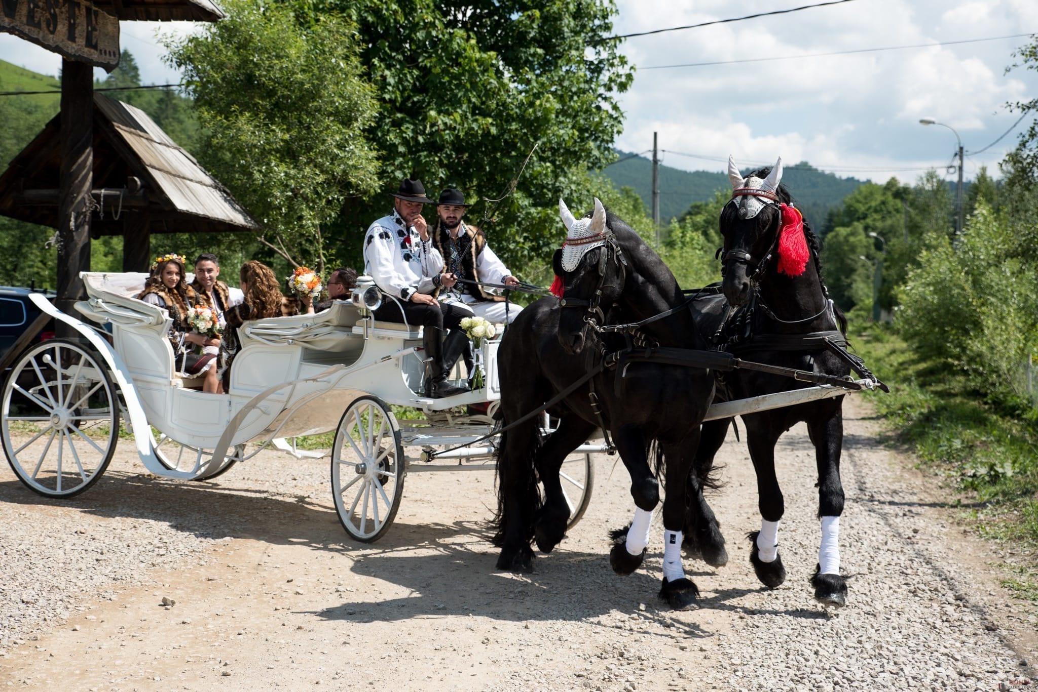 Povești Nunți Tradiționale - Irina și Alexandru, nuntă în Câmpulung Moldovenesc, Suceava 43
