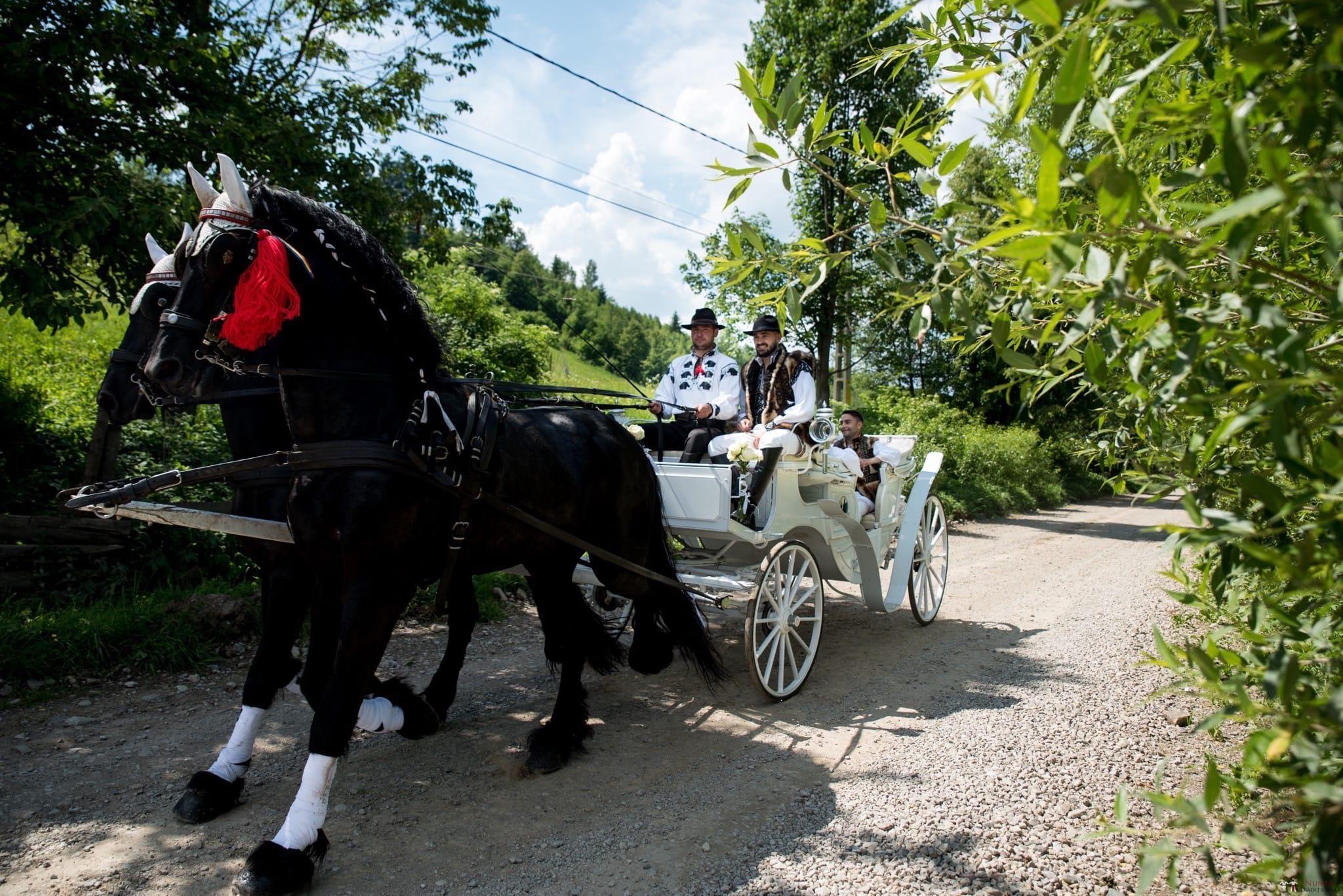 Povești Nunți Tradiționale - Irina și Alexandru, nuntă în Câmpulung Moldovenesc, Suceava 44